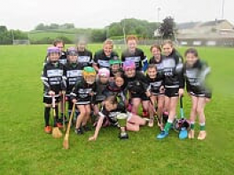 Camogie County Tournament 2019