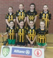 Indoor Hurling & Camogie, OMAGH: Heat 4