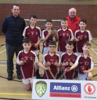 Indoor Hurling Co. Final 2020