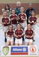 Indoor Camogie Co. Final 2020